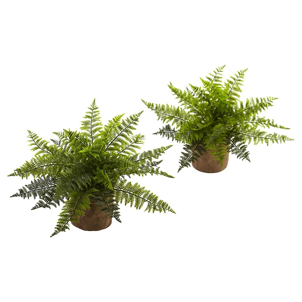 "Image of Ruffle Fern Bush in Burlap Bases (Set of 2) - Green (15"")"