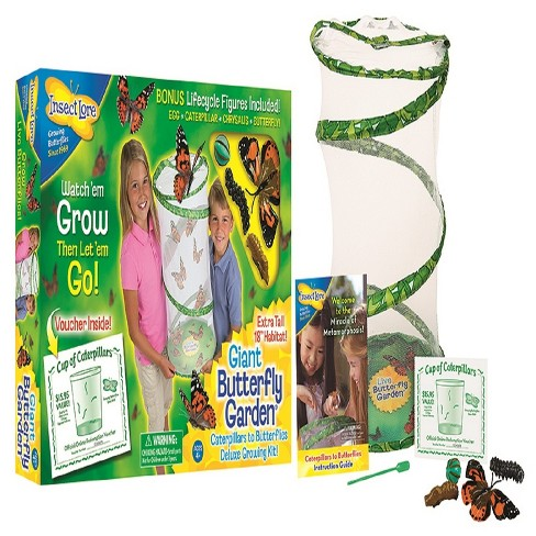 Insect Lore Giant Butterfly Garden : Target