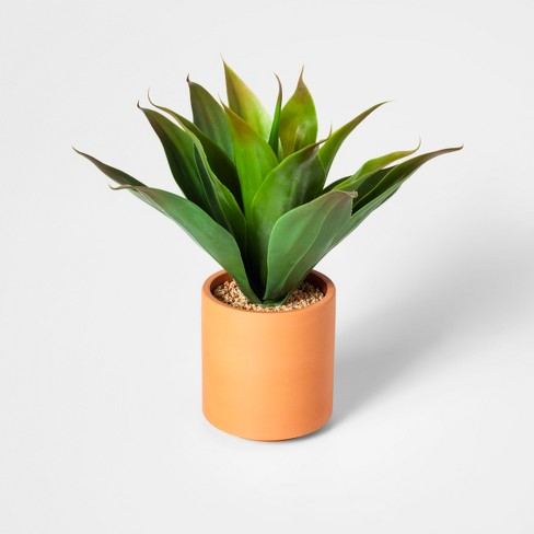 "14"" x 10"" Artificial Succulent In Terra Cotta Pot Green - Project 62™ - image 1 of 5"