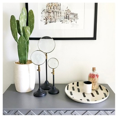 Cactus Home Dcor Collection : Target