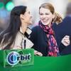 Orbit Spearmint Sugarfree Gum Multipack - 14 sticks/3pk - image 4 of 4