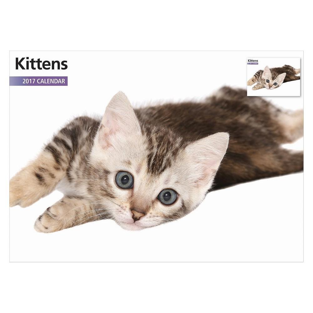 Kitten 2017 12 Month Calendar