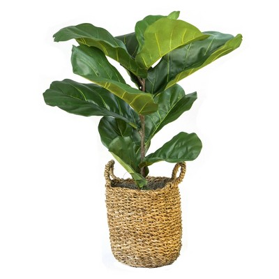 "36"" x 18"" Artificial Fiddle Leaf Fig Plant in Basket - LCG Florals"