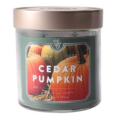 15.2oz Large Jar 2-Wick Candle Cedar Pumpkin - Signature Soy