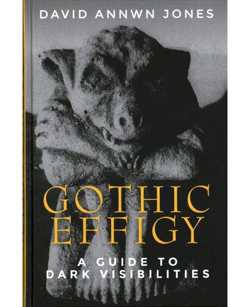 Gothic Effigy : A Guide to Dark Visibilities -  by David Annwn Jones (Hardcover) - image 1 of 1