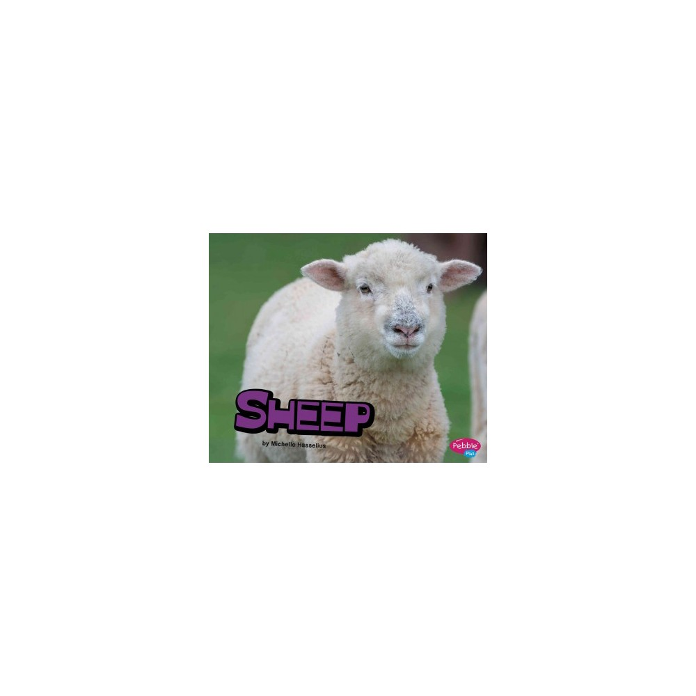 Sheep (Paperback) (Michelle Hasselius)