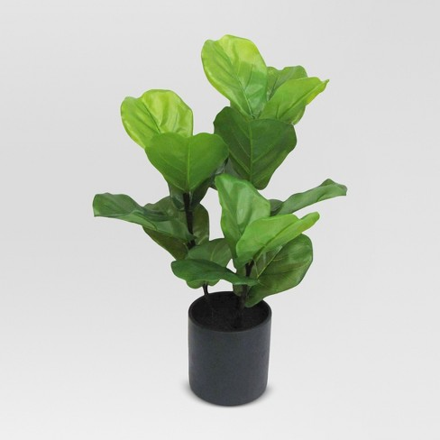 Artificial Fiddle Leaf Fig Plant in Black Pot Large - Threshold™ - image 1 of 1