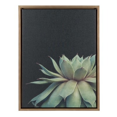 Kate & Laurel 24 x18  Sylvie Succulent Framed Wall Canvas Gold