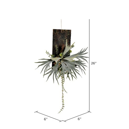 """Vickerman 26"""" Staghorn Fern on Wooden Plaque. - image 1 of 1"""