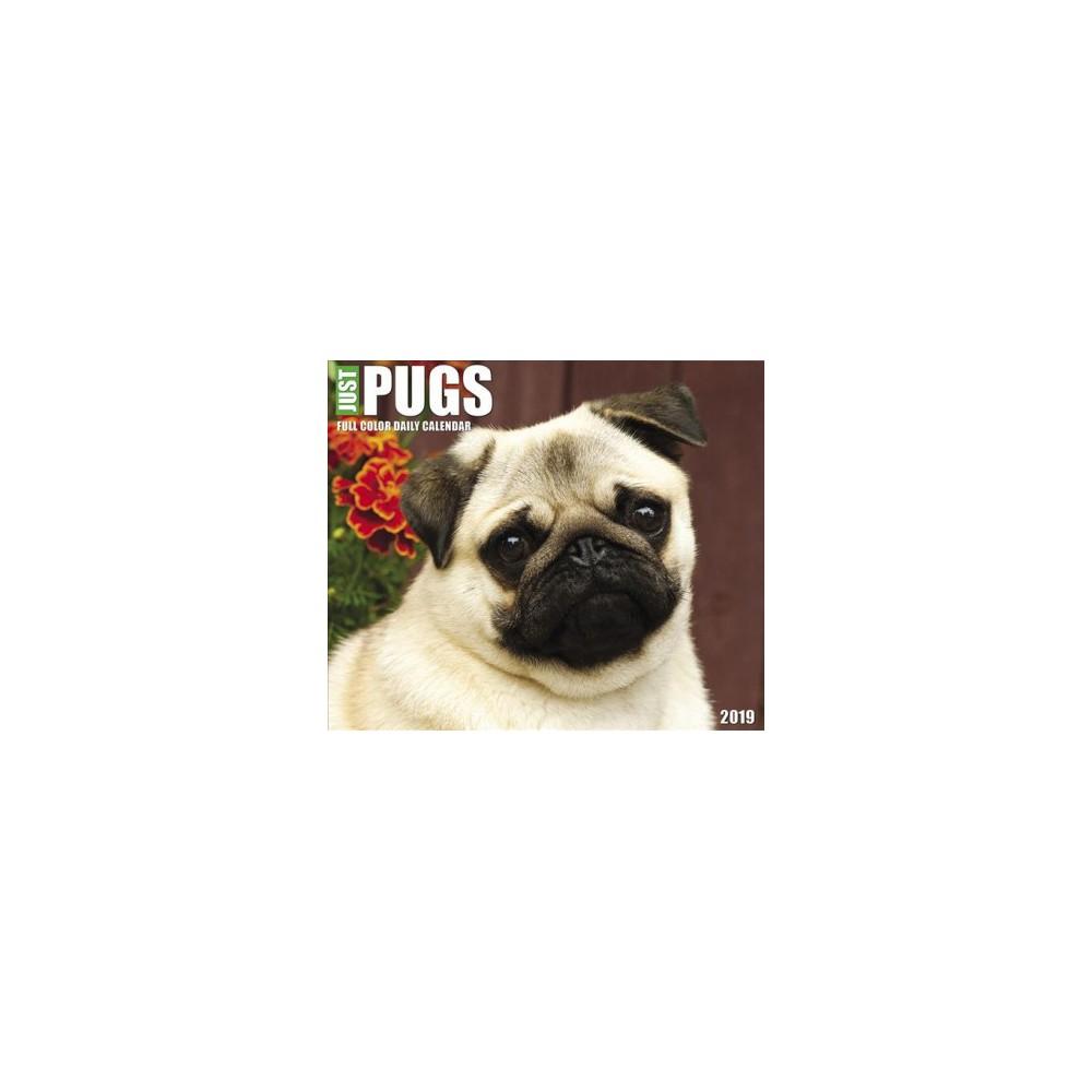 Just Pugs 2019 Calendar - (Paperback)