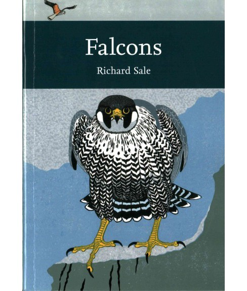 Falcons (Paperback) (Richard Sale) - image 1 of 1