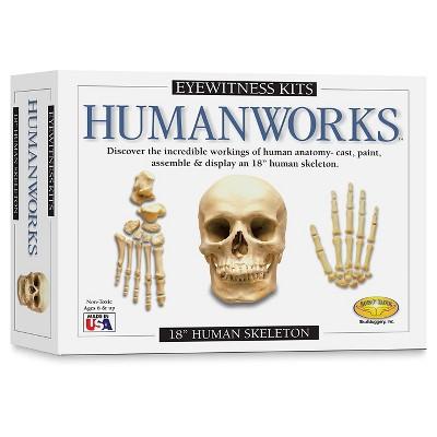 Eyewitness Humanworks Casting Kit