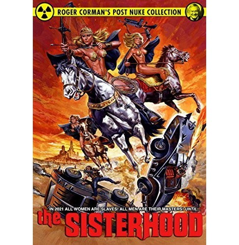 Sisterhood (DVD) - image 1 of 1