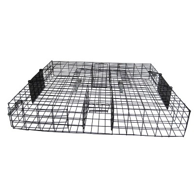 Rugged Ranch SQR Squirrelinator Live Chipmunk Squirrel Rat Mouse Rodent Small Animal Metal Wire 2 Door Trap Cage, Black