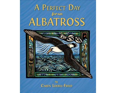 Perfect Day for an Albatross -  by Caren Loebel-Fried (Hardcover) - image 1 of 1