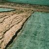 DeWitt Curlex I Single Excelsior Landscape Erosion Control Blanket, 4' x 112.5' - image 4 of 4