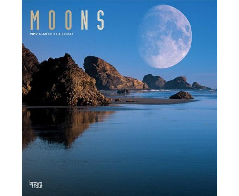 Moons 2019 Calendar -  (Paperback) - image 1 of 1
