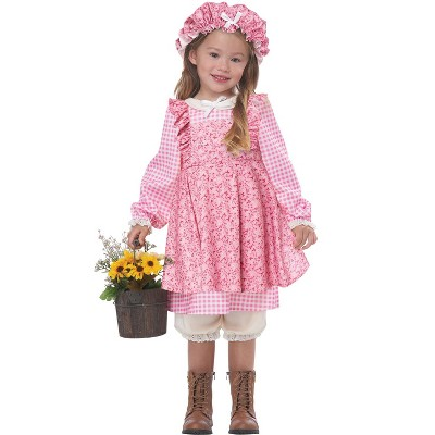 California Costumes Little Prairie Girl Toddler Costume (Pink)