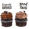 Blue Panda 100 Pack Congrats Grad Cupcake Toppers Picks Cake Decor, 2021 Graduation Party Supplies Decorations - image 4 of 4