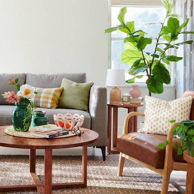 Spring Living Room Decor Collection Target