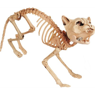 Halloween Sonic Realistic Skeleton Cat