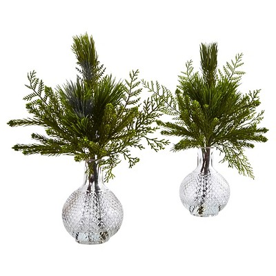 Mixed Pine Arranged in Glass Vases - Set of 2 - Nearly Natural