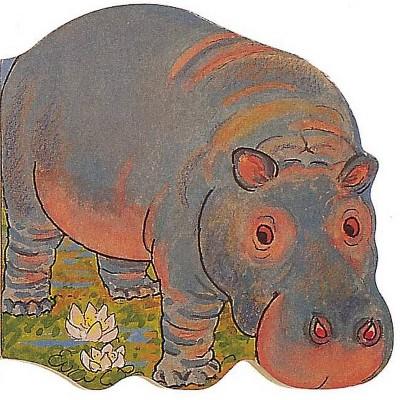 Hippo - (Pocket Pals (Safari Ltd)) (Board Book)
