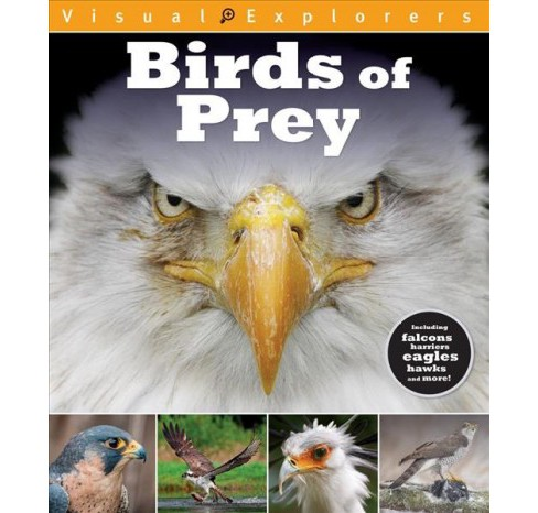 Birds of Prey -  (Visual Explorers) by Toby Reynolds & Paul Calver (Paperback) - image 1 of 1
