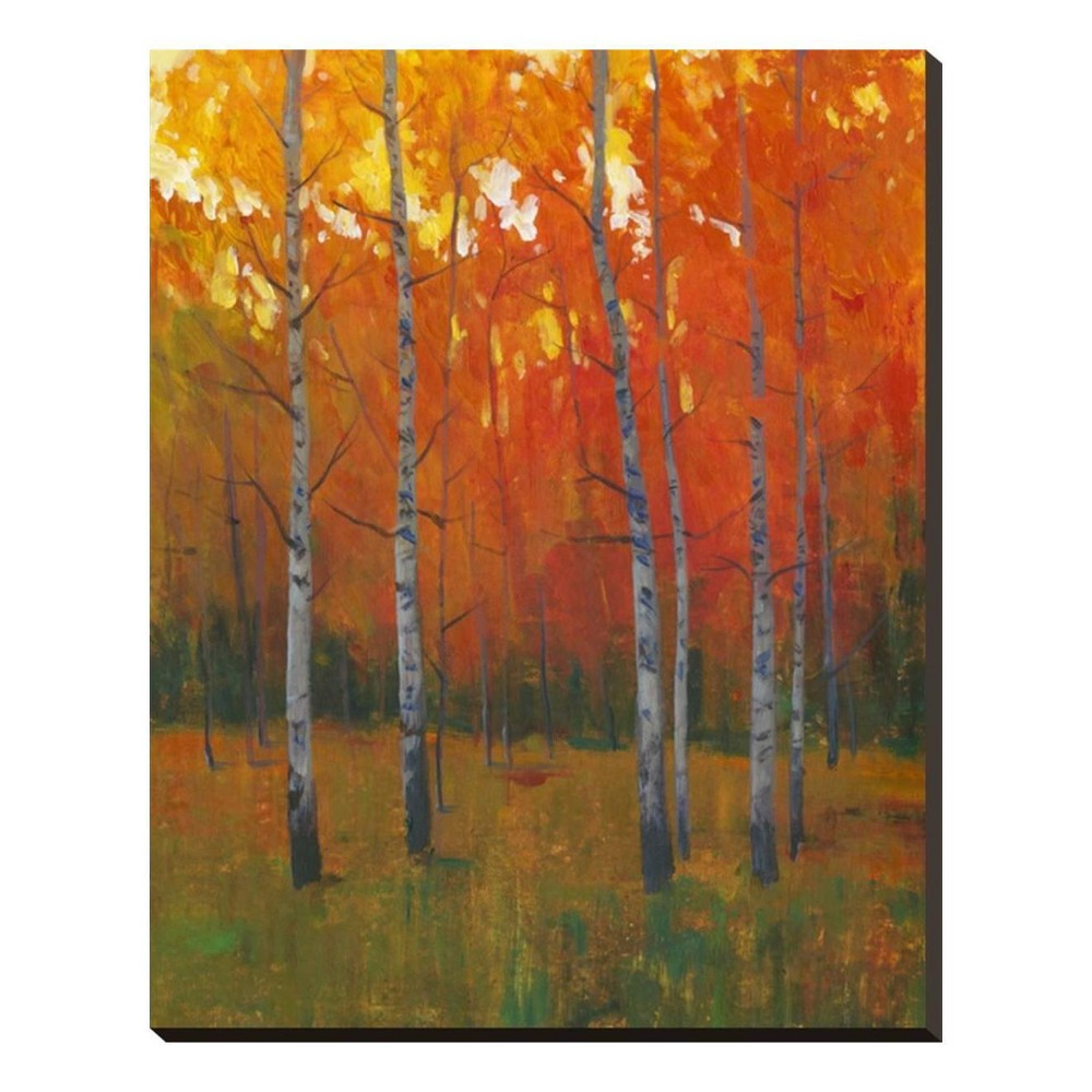 Changing Colors I By Tim O'Toole Stretched Canvas Print 25x31 - Art.com, Multicolored