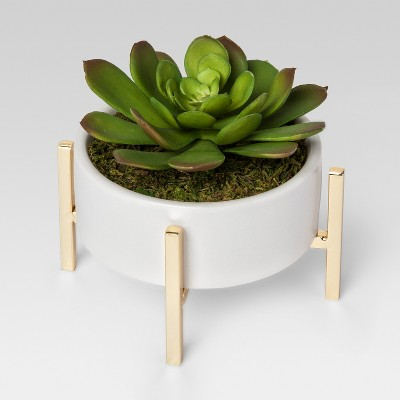 Artificial Succulent in Stand Small - White - Project 62™