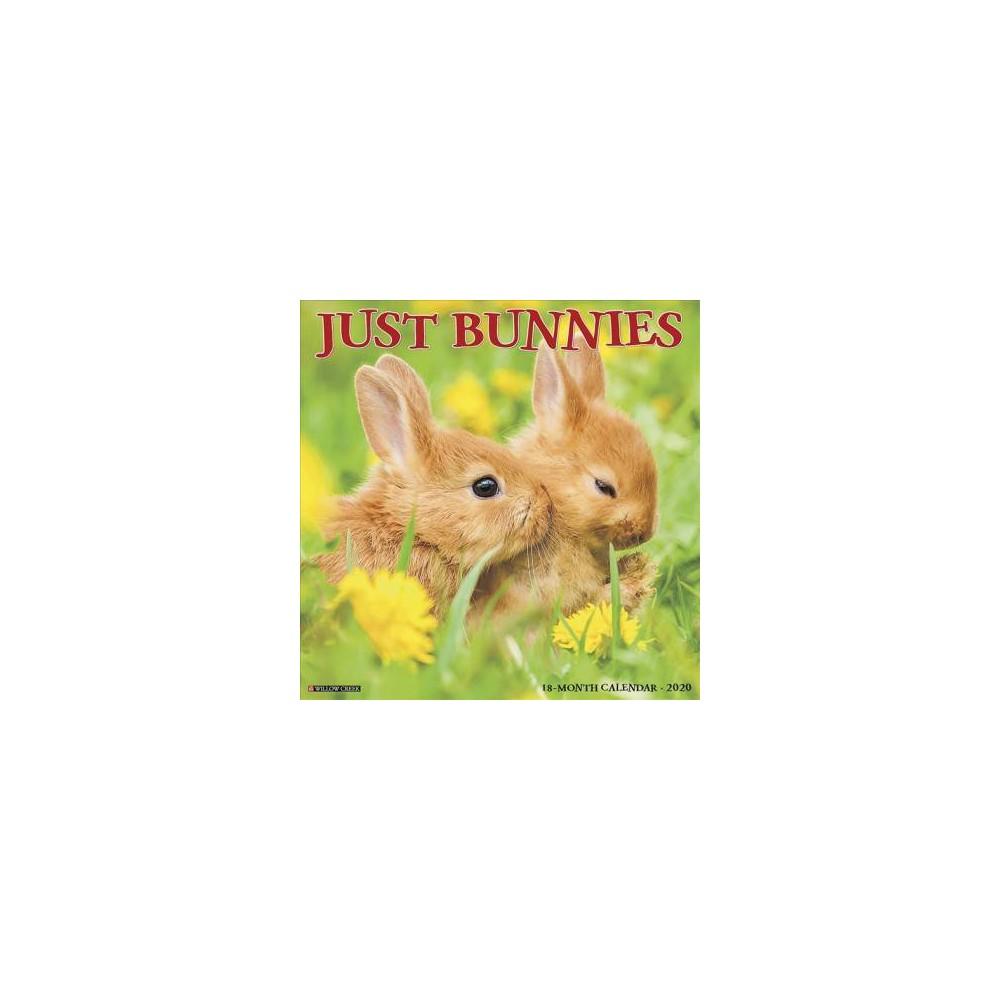 Just Bunnies 2020 Calendar - (Paperback)