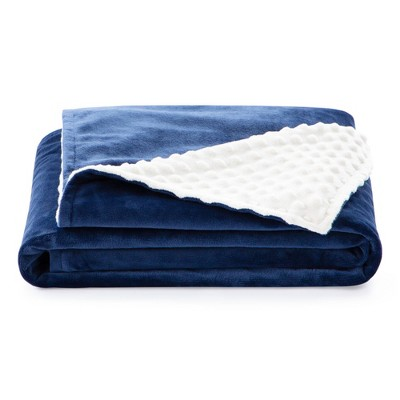 """38"""" x 48"""" Comfort Collection Microplush Weighted Blanket Cover - Lucid"""
