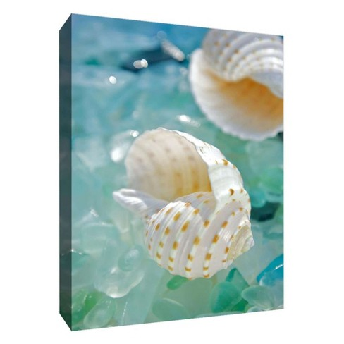 "Crystal Shells I Decorative Canvas Wall Art 11""x14"" - PTM Images - image 1 of 1"