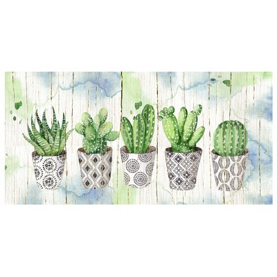 17 x34  Potted Succulents On Wood By Elena Vladykina Art On Canvas - Fine Art Canvas