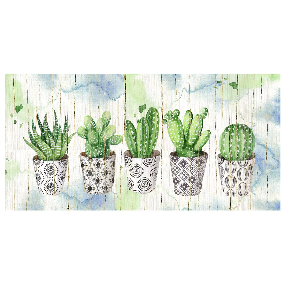 "Image of ""17""""x34"""" Potted Succulents On Wood By Elena Vladykina Art On Canvas - Fine Art Canvas"""