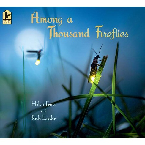 Among a Thousand Fireflies - by  Helen Frost (Paperback) - image 1 of 1