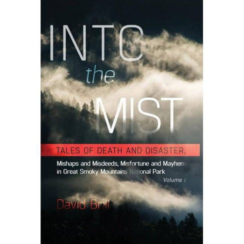 Into the Mist - 2 Edition by  David Brill (Paperback) - image 1 of 1