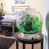 biOrb Feather Fern Set Aquarium Artificial Plants - Green - S - image 2 of 3