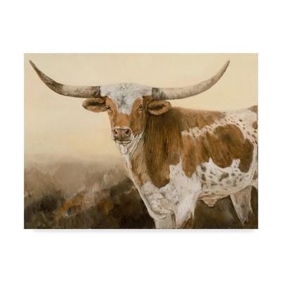 35 X47  Kathy Winkler  Long Ago And Far Away  Canvas Art - Trademark Fine Art