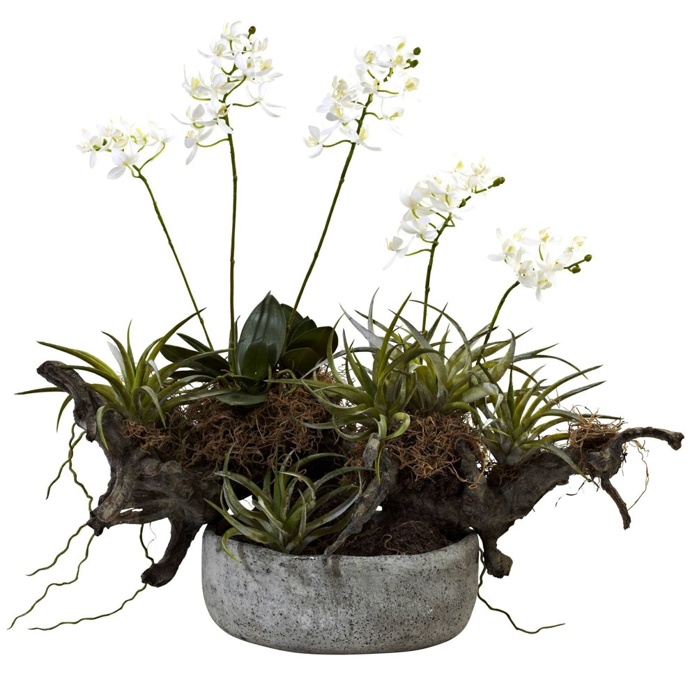 """20"""" x 22"""" Artificial Orchid & Succulent Garden with Driftwood in Vase White/Green - Nearly Natural, White Green"""