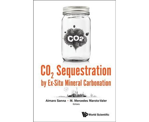 Co2 Sequestration by Ex-Situ Mineral Carbonation (Hardcover) - image 1 of 1