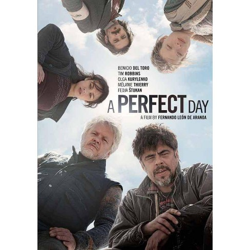 A Perfect Day (DVD) - image 1 of 1