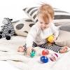 Baby Einstein Roller-pillar Activity Balls Toys - image 3 of 4