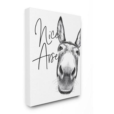 Stupell Industries Animal Humor Nice Arse Donkey Bathroom Phrase