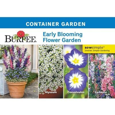 Burpee Garden Early Blooming Flower Garden