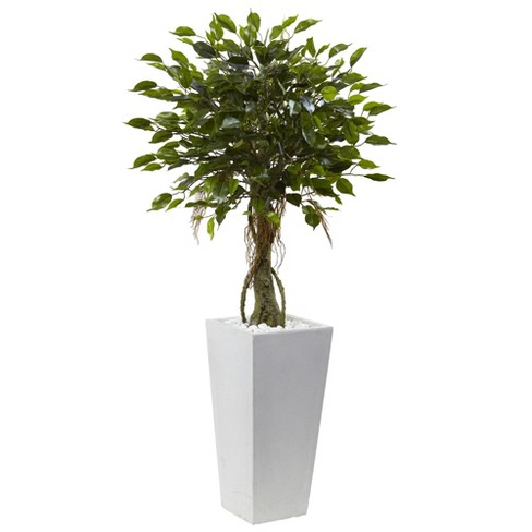 52 Ficus Tree With White Planter Uv Resistant Indoor Outdoor Nearly Natural