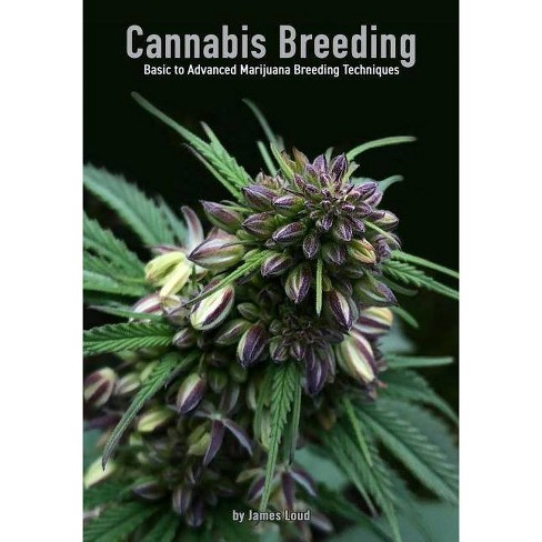 Cannabis Breeding - by  James Loud (Paperback) - image 1 of 1