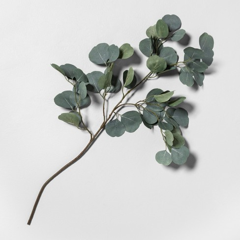 """30"""" Faux Eucalyptus Stem - Hearth & Hand™ with Magnolia - image 1 of 1"""