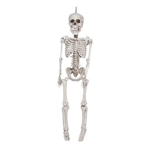 """36"""" Halloween Hanging Skeleton - image 1 of 1"""