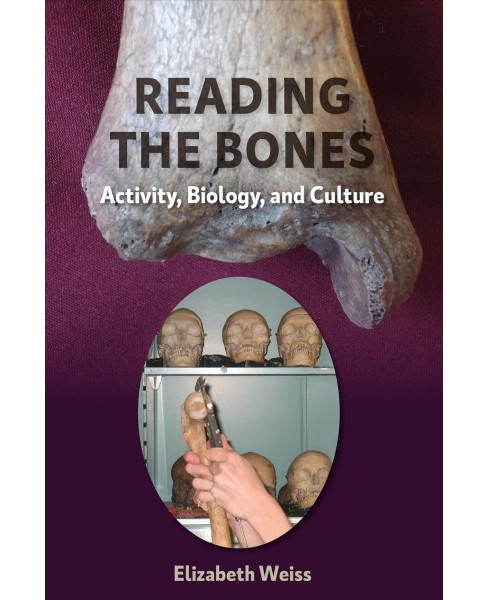 Reading the Bones : Activity, Biology, and Culture -  by Elizabeth Weiss (Hardcover) - image 1 of 1